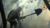 I Vigili del Fuoco non bastano: contro gli incendi nelle aree verdi vanno riviste procedure e competenze
